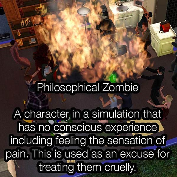 Philosophical zombies and the Sims